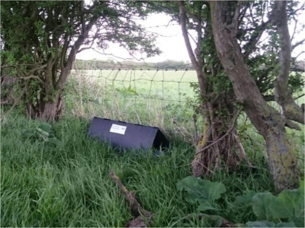 Made Up Hedgehog Tunnel Sited Under Trees