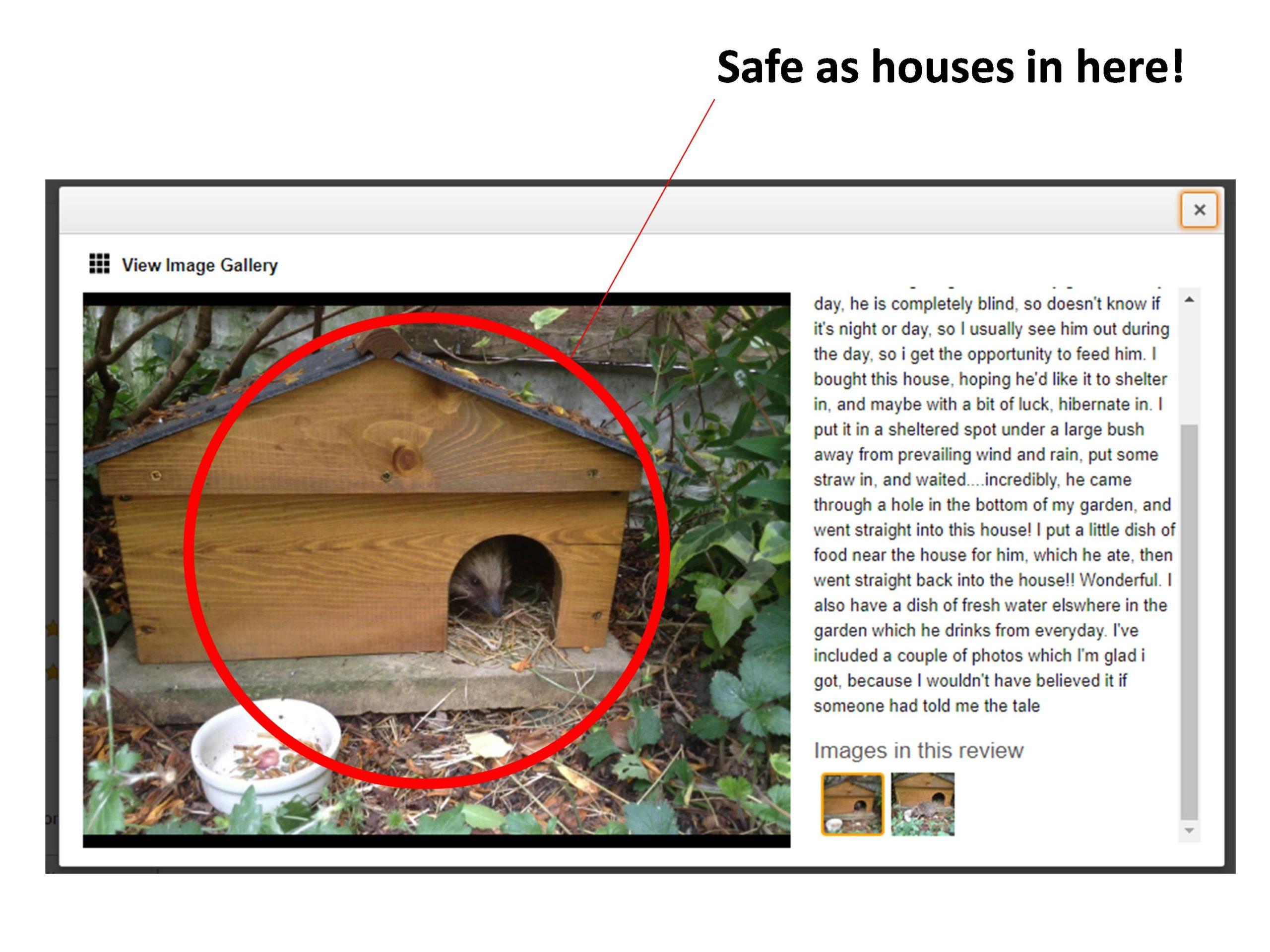 Tom Chamber Hedgehog House Pic 1